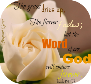 The grass dries up, the flower fades; but the Word of our God will endure for ever. ~Isaiah 40:8