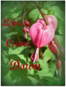 LoveCameDown